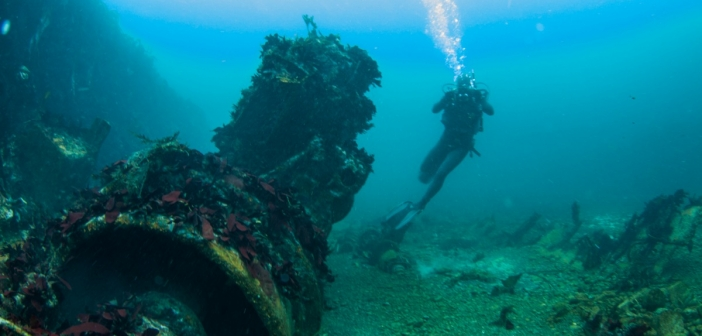 Shipwrecks: Ireland's Manmade Reefs